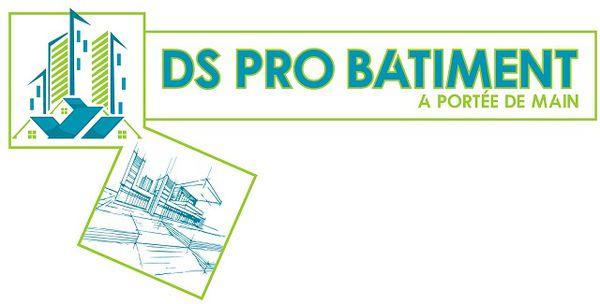 Logo D.S. PRO BATIMENT