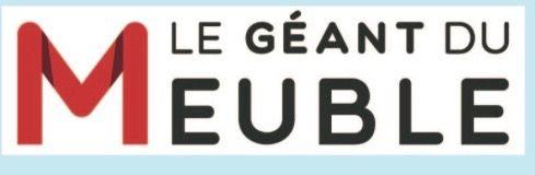Logo LE GEANT DU MEUBLE