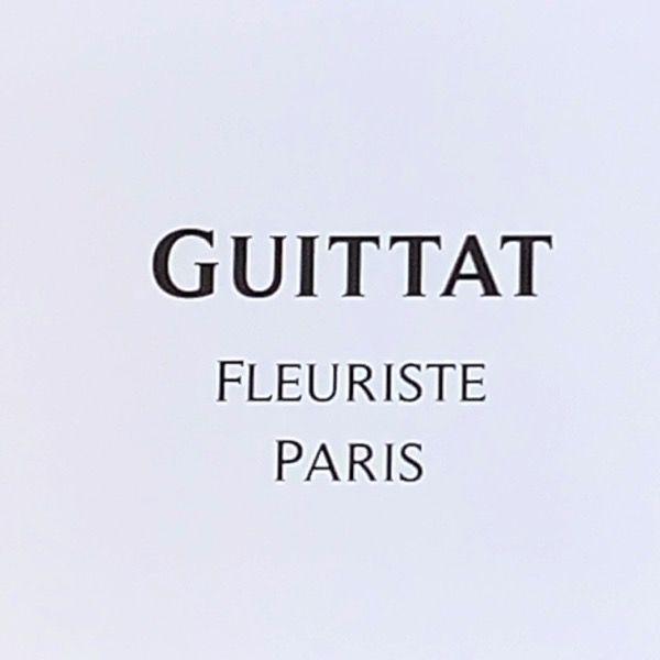 Logo Daniel GUITTAT