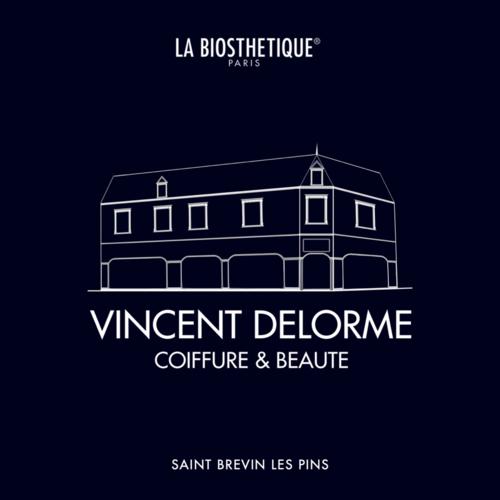 Logo Vincent Delorme