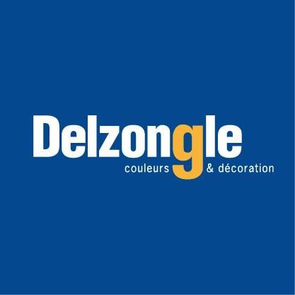 Logo Delzongle Midi-pyrénées Couleurs & Décoration Toulouse - Balma