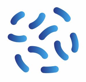 Logo Laboratoire Des Halles De Beauvais Biolam
