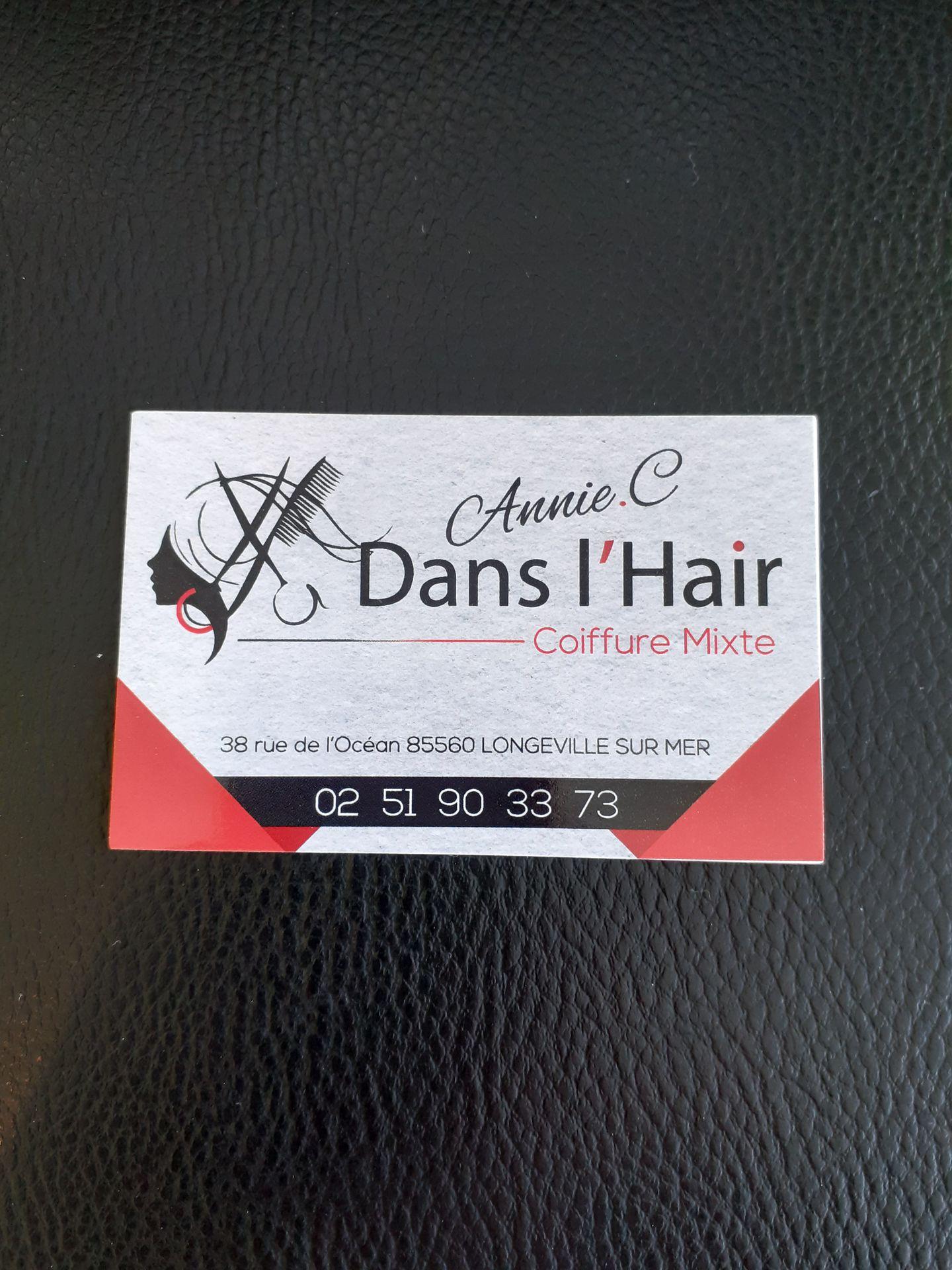Logo ANNIE .C DANS L'HAIR Ans