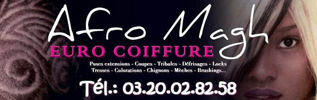 Logo Afro Magh Euro