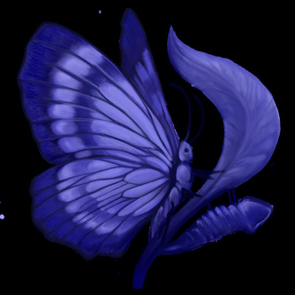 Logo Chrysalid
