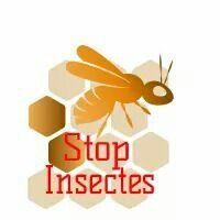 Logo STOP INSECTES