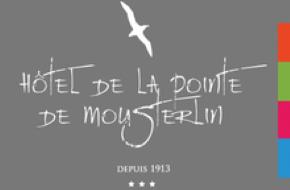 Logo Hôtel Restaurant De La Pointe Mousterlin