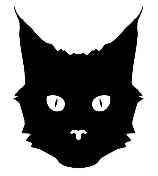 Logo La Panthère Noire