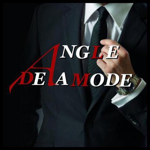 Logo ANGLE DE LA MODE