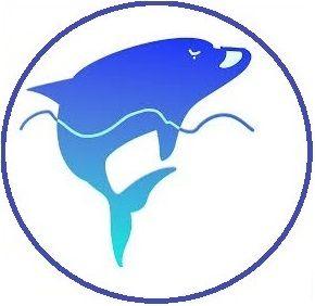 Logo Coach Executive Dauphin