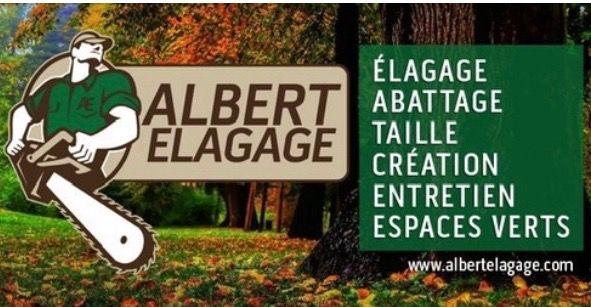 Logo Albert Elagage Abattage d'Arbres