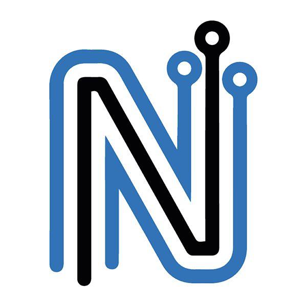 Logo Netz Informatique Haguenau