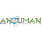 Logo ANOUMAN Audit et Expertise