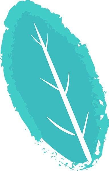 Logo Bourreau Euriel Naturopathie