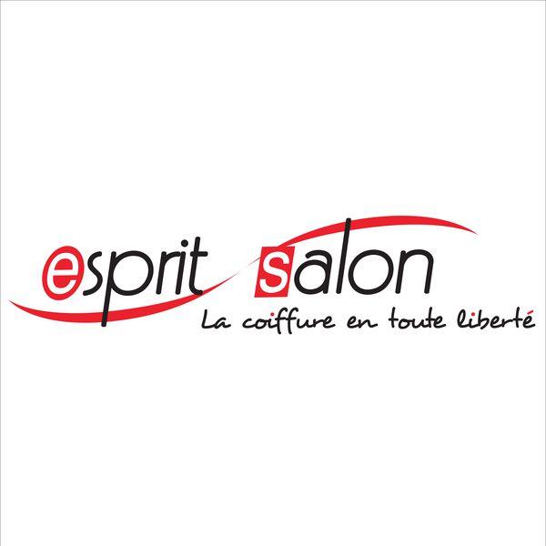 Logo Esprit Salon