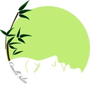 Logo Ecole 2D degré polyvalent privée Esthétique Camille Séline