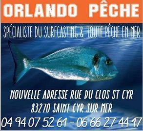 Logo Real Fishing Distribution