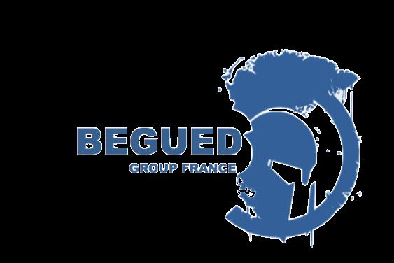 Logo BEGUED GROUP FRANCE
