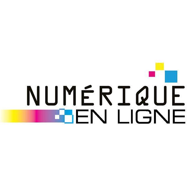 Logo Imprimerie Vercingétorix Photogravure