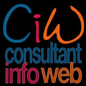 Logo Consultant Info Web