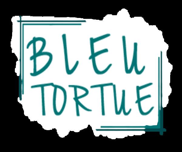 Logo Bleu Tortue