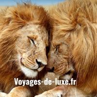 Voyages De Luxe - PARIS