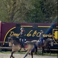 Domaine Equestre De L'Ormerie - PONT L'EVÊQUE