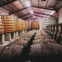 Pineau et Cognac Roussille - LINARS