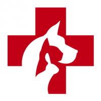 Vétérinaires 2 Toute Urgence - Marseille - MARSEILLE
