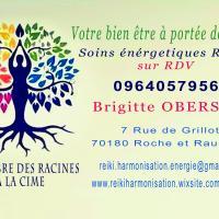 Reiki Harmonisation Energie - ROCHE ET RAUCOURT
