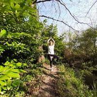 Ly Reiki Yoga - LONS