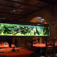 Restaurant Papa Lisa - STRASBOURG