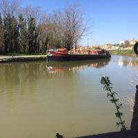 Le Moulin de Trebes - Restaurant Reviews, Photos & Phone