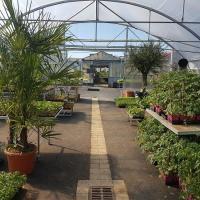 Nicou Paysage et Horticulture - ESSARTS EN BOCAGE