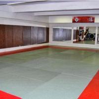 Okinawa Shaolin - LYON