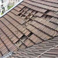 Protection Hygiène Des Bâtiments - RUEIL MALMAISON