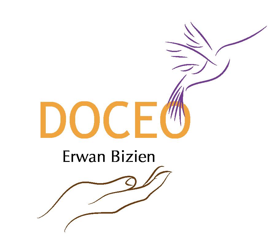 Logo Erwan Bizien Doceo