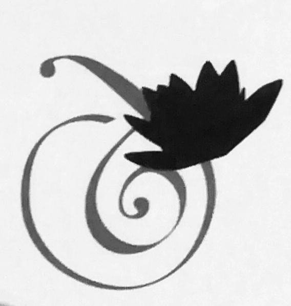 Logo Institut  Guinot Nenuphar