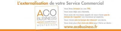 ACO Business - Agent commercial - Montbrison