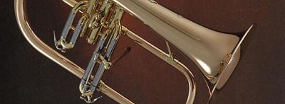 Atelier des Vents - Vente et location d'instruments de musique - Tarbes