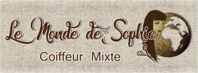 Salon Le Monde De Sophie - Coiffeur - Brive-la-Gaillarde
