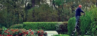 Amper - Petits travaux de jardinage - Vannes