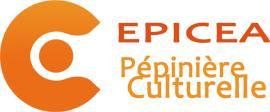 Pépinière Culturelle Epicéa - Leçon de musique et chant - Limoges