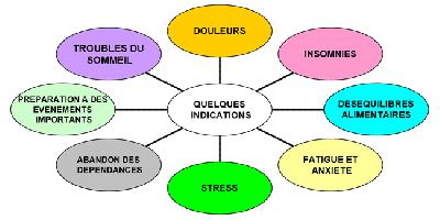 Amélie Duprez - Conseil en formation et gestion de personnel - Paris