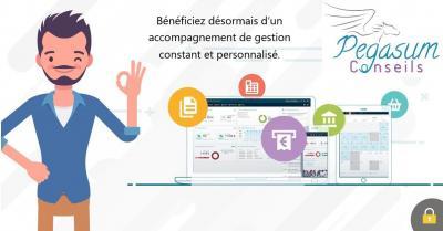 Pegasum Conseils - Conseil et études financières - Niort