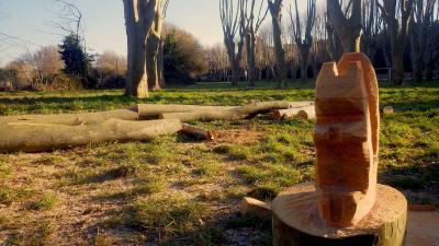 Ecureuil Vert - Aménagement et entretien de parcs et jardins - Nîmes