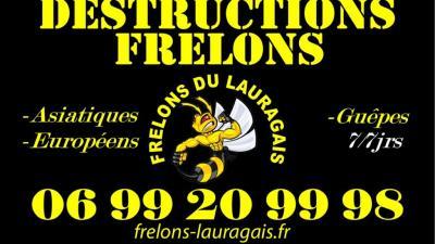 Frelons Du Lauragais - Dératisation, désinsectisation et désinfection - Revel