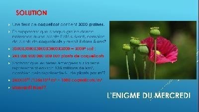 Lafaye Lionel - Soutien scolaire et cours particuliers - Nîmes