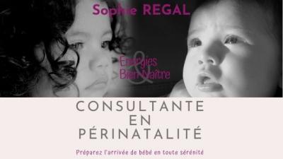 Sophie Energies et Bien-Naître - Soins hors d'un cadre réglementé - La Motte-Servolex