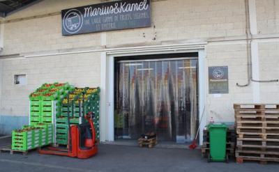 Mk Bio SARL - Commerce en gros de fruits et légumes - Montpellier